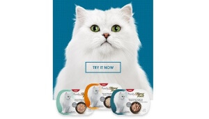 Free Purely Fancy Feast