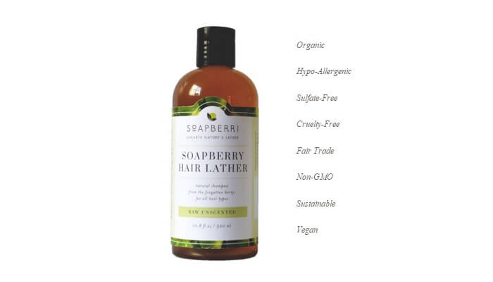 Free Soapberry Body Wash