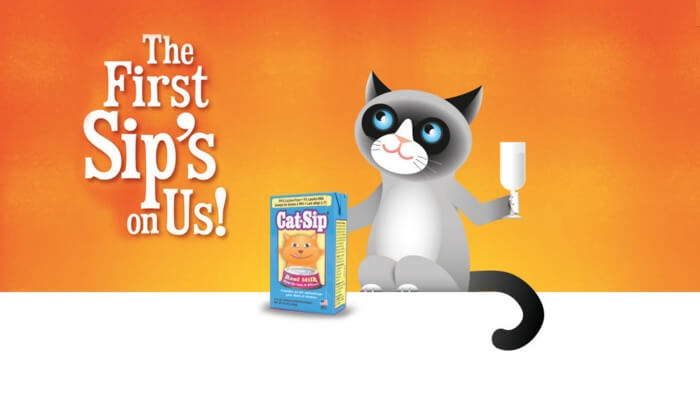 Free Cat Sip Samples